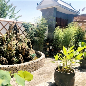 西安王庄社区:垃圾分类一年多 村容村貌大变样